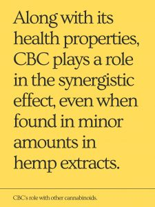 CBC role with other cannabinoids and CBD in our body