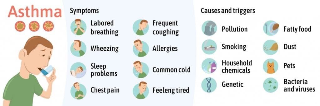 Asthma symptoms, causes, and triggers infographic